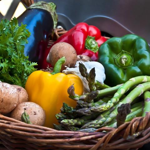 20120319-Food_basket liz west from Boxborough, MA-2