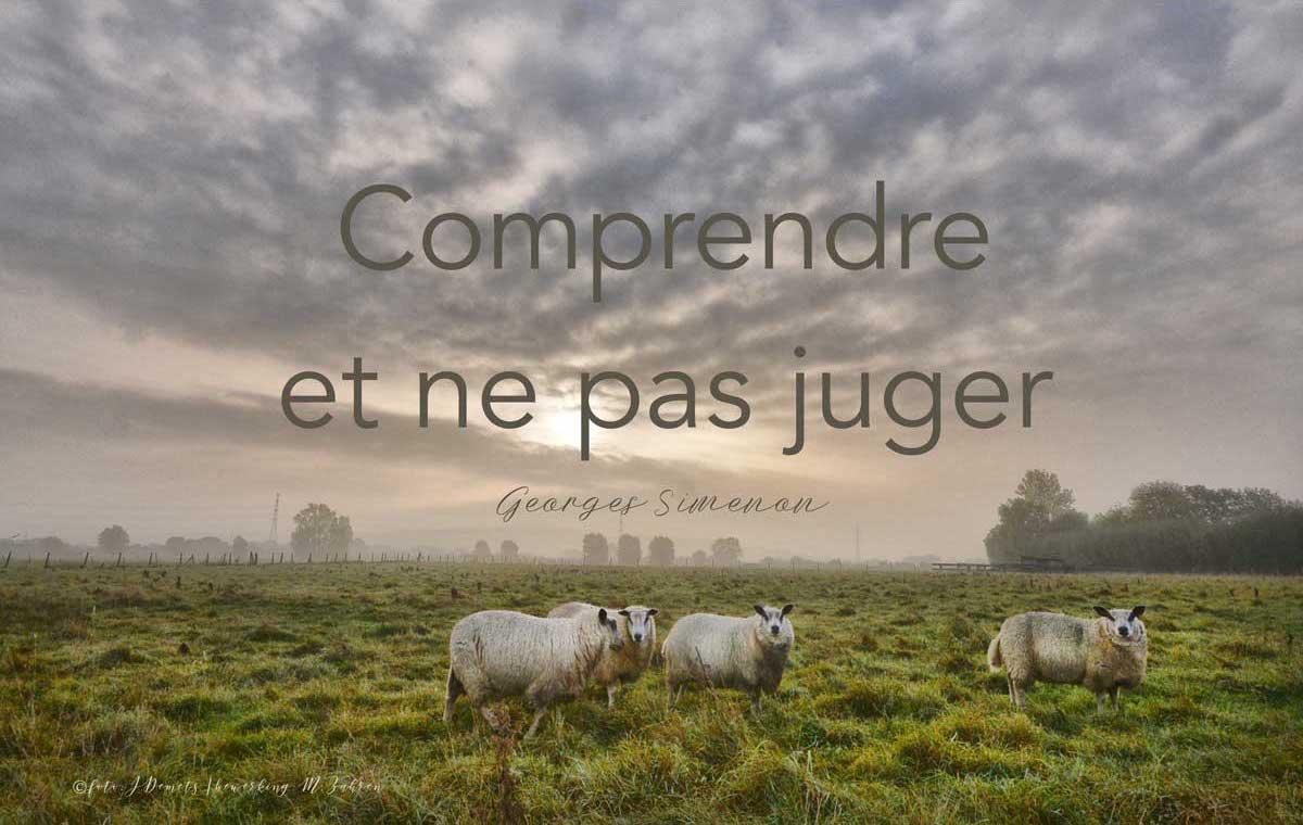 """""""Comprendre et ne pas juger"""" is het motto van Maigret, bedacht door Georges Simoenon"""
