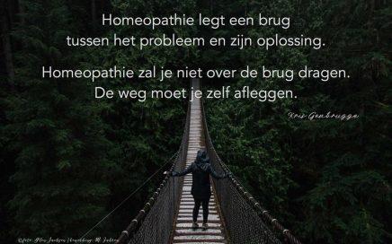 Homeopathie legt een brug