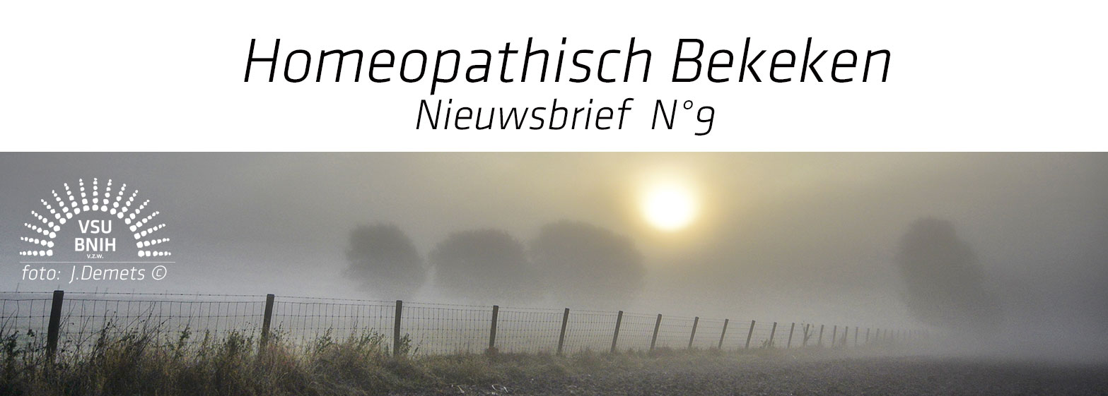 Nieuwsbrief-Header-N°09
