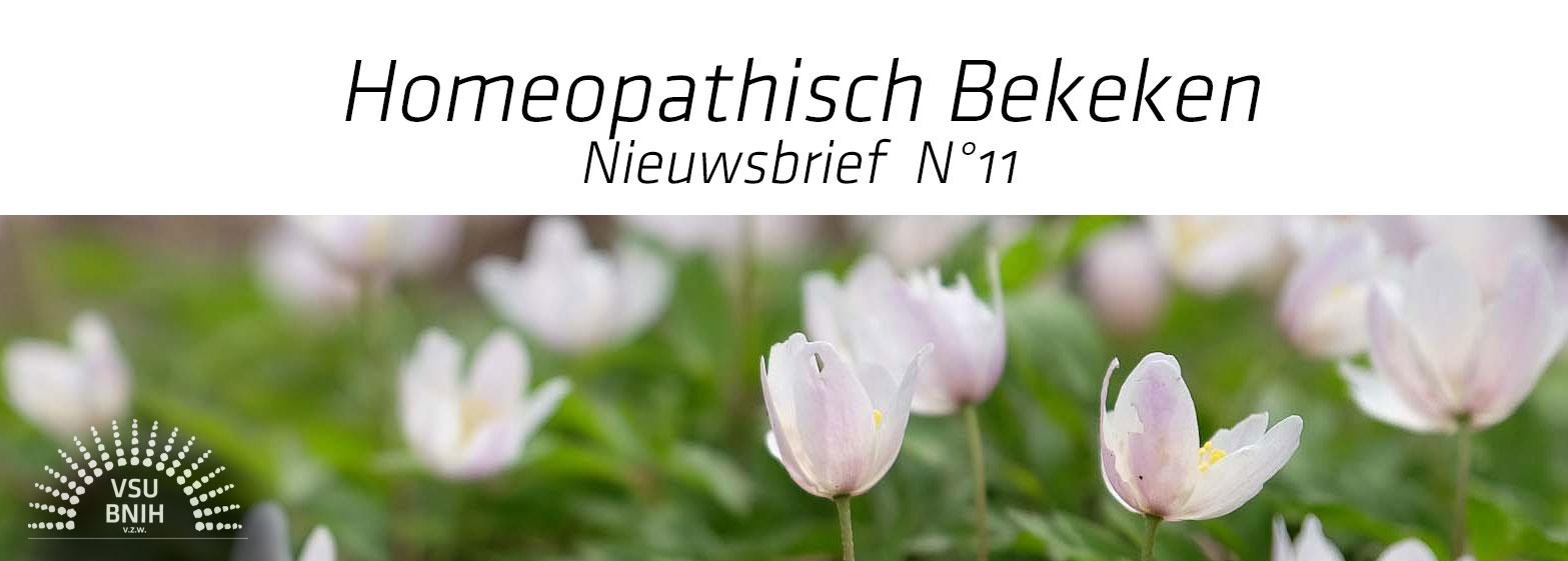 Nieuwsbrief N°11 - ©foto: Meta Zahren