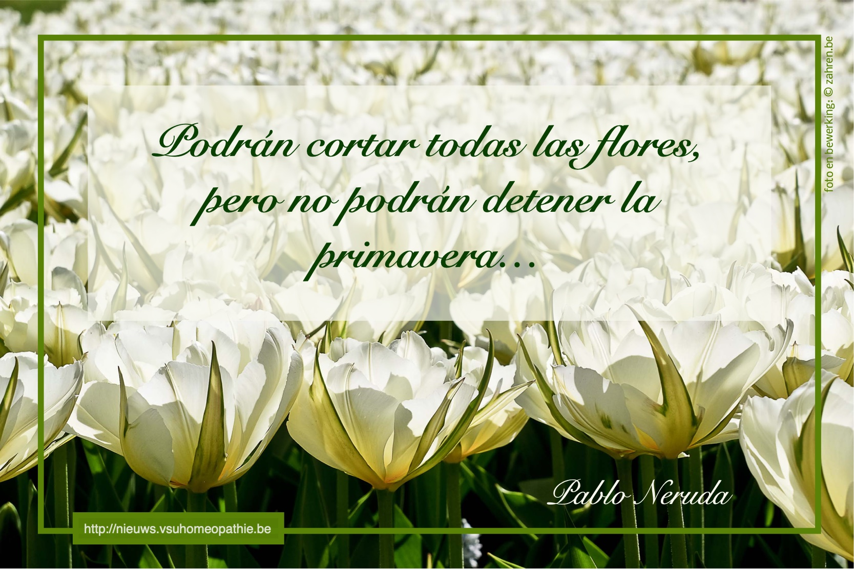 je-kan-alle-bloemen-plukken