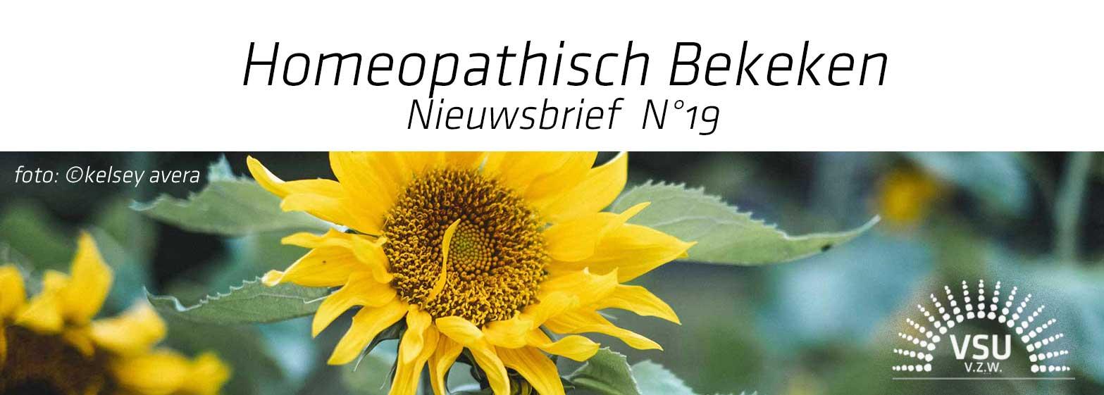 Homeopathisch Bekeken 19 (foto Kelsey Avera)